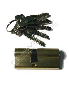 Cilindro Abus D6 MM 30x40mm latonado
